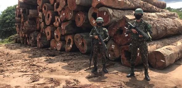 Militares apreendem balsas carregadas com madeira extraída no Pará